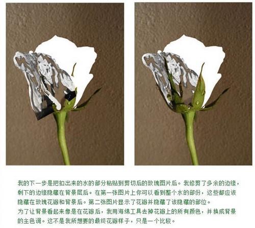 ps合成-打造创意水玫瑰