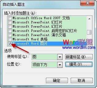 Word2003如何自动插入题注