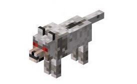 《我的世界》狼怎么驯服 新版本玩家养狼指南