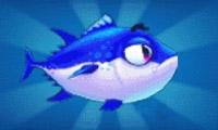 《捕鱼达人3》金枪鱼图鉴及打法技巧攻略