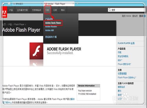 flash player怎么更新