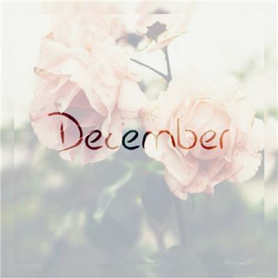 12月你好11月再见图片祝福语大全 附寄语图片大全