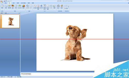 PPT文档中怎么水平或竖直镜像翻转图片呢?